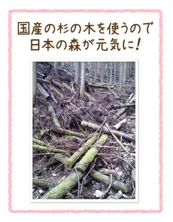 木工キットは間伐材