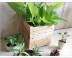 sw29キューブボックス スマイルウッド木工作品
